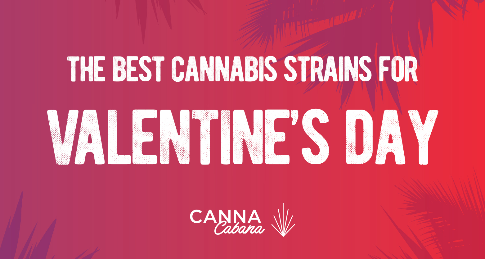 The Best Cannabis Strains for Valentine's Day 2021