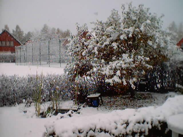 Sweden, October 21 2003