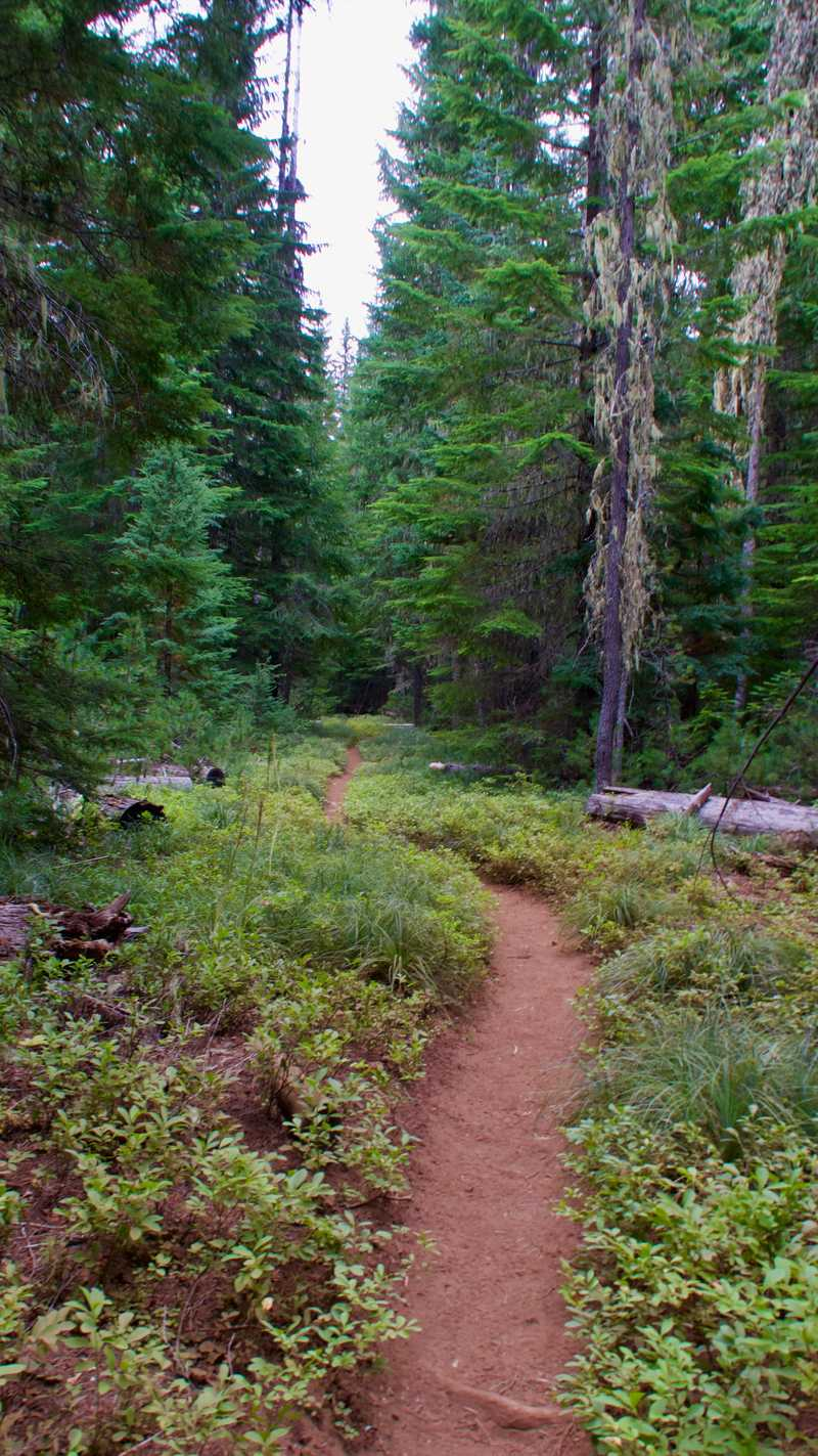 The trail enters Warm Springs Indian Reservation