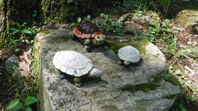 Quarry Gap Shelter turtle figurines