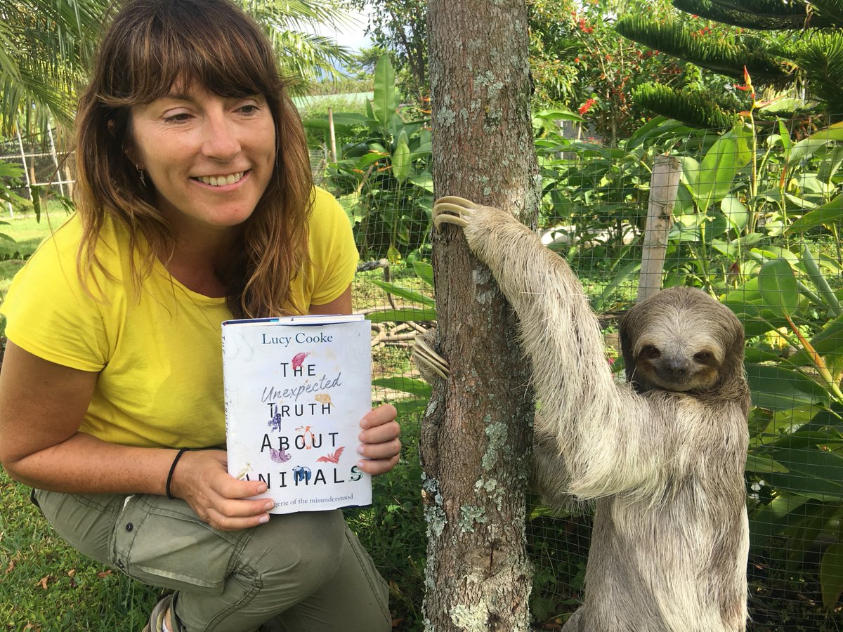 Люси Кук вместе с ленивцем и своей книгой. Фото: twitter.com/mslucycooke