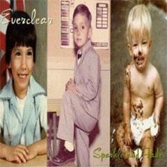 Everclear Sparkle and Fade album cover