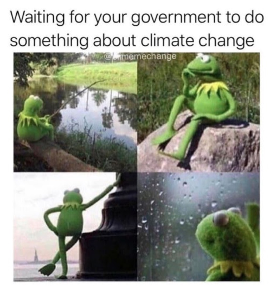 Kermit the frog meme: Waiting for your government to do something about climate change.