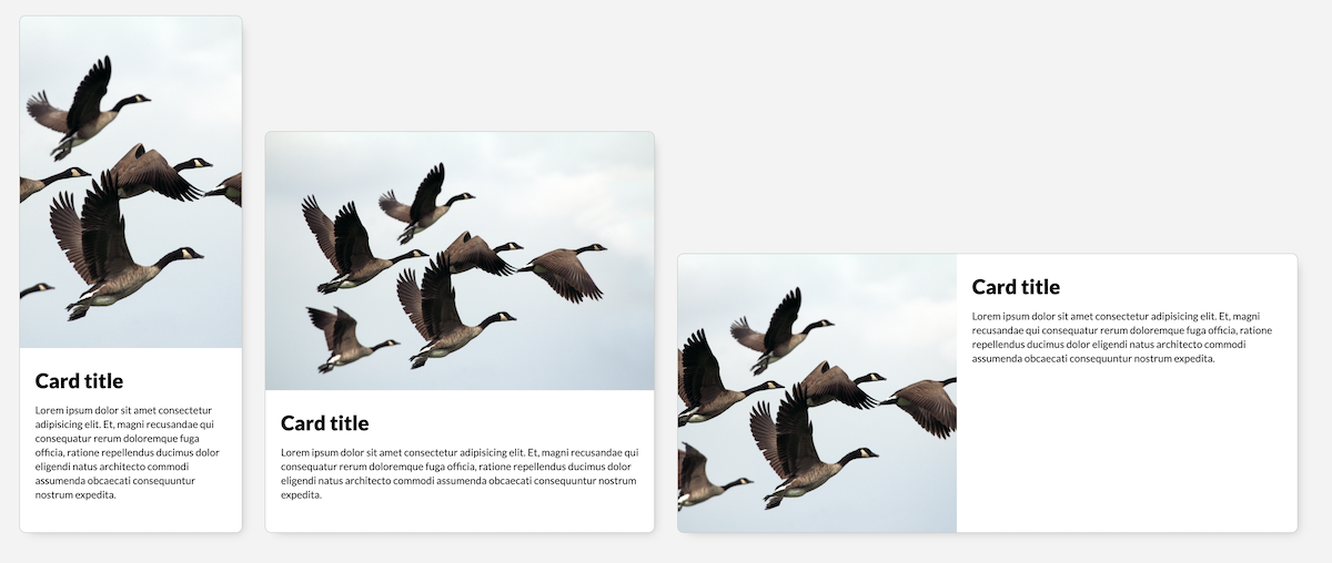 A screenshot of the demo using the aspect-ratio and object-fit properties to scale and crop an image in a card component. The aspect ratio of the image responds to the size of the component, and the image is scaled to fit inside its container.
