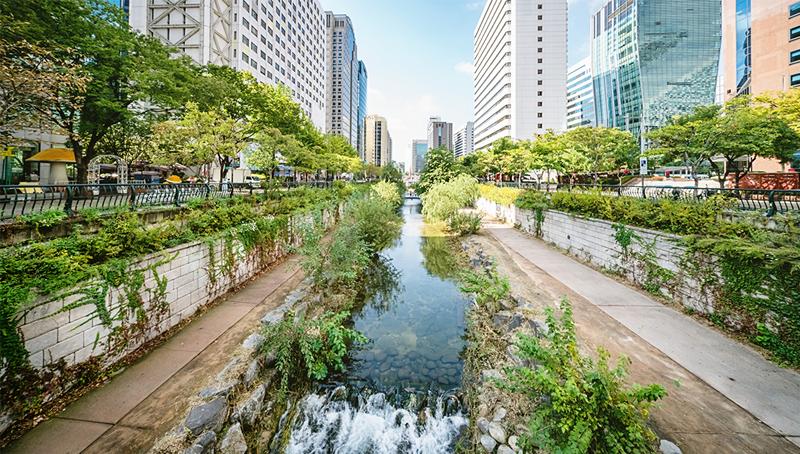 Imagem em destaque para o artigo: Cases de sucesso ambiental: as cidades que mudaram sua realidade