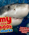 My little book of sharks by Camilla de la Bedoyere