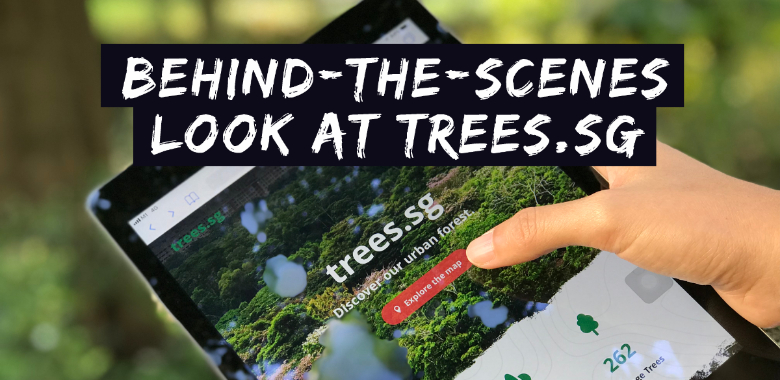 the inside story of how nparks mapped 500,000 trees in singapore on trees.sg