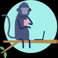 monkey coding