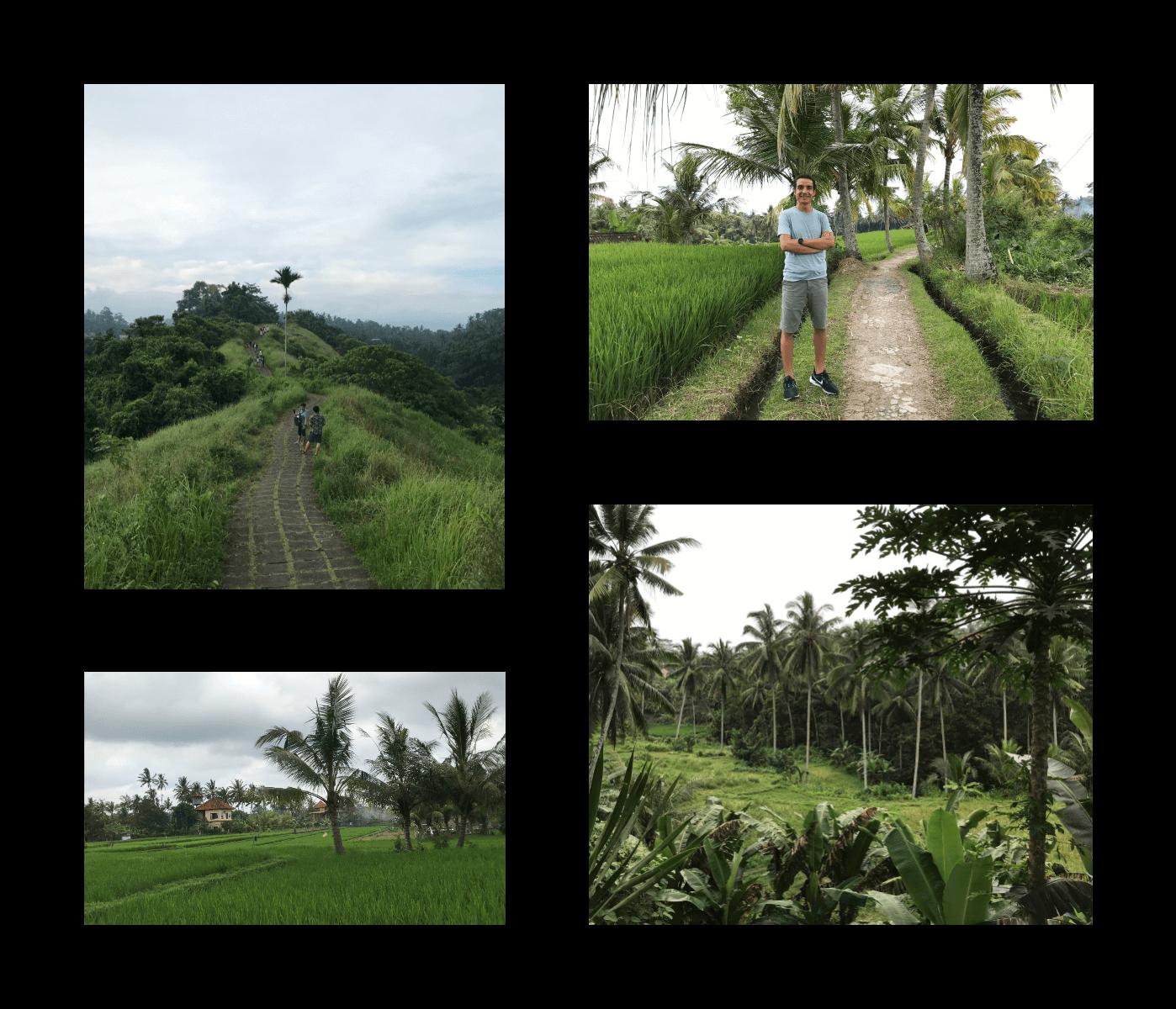 Ubud Town Images