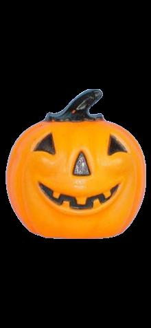 Flat Back Pumpkin photo