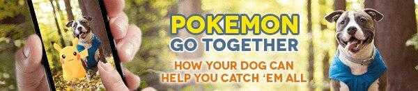 Pokemon Go Together