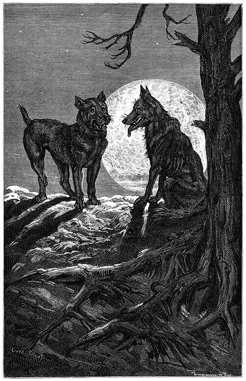 Wolf and the Mastiff