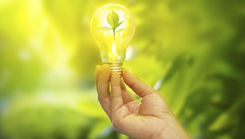 Imagem em destaque para o artigo: 5 ideias inusitadas a favor do meio ambiente