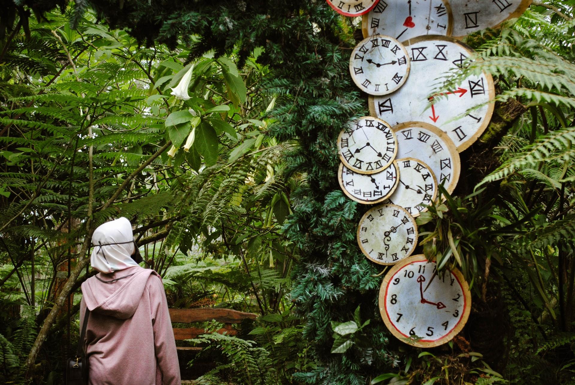 Varios relógios