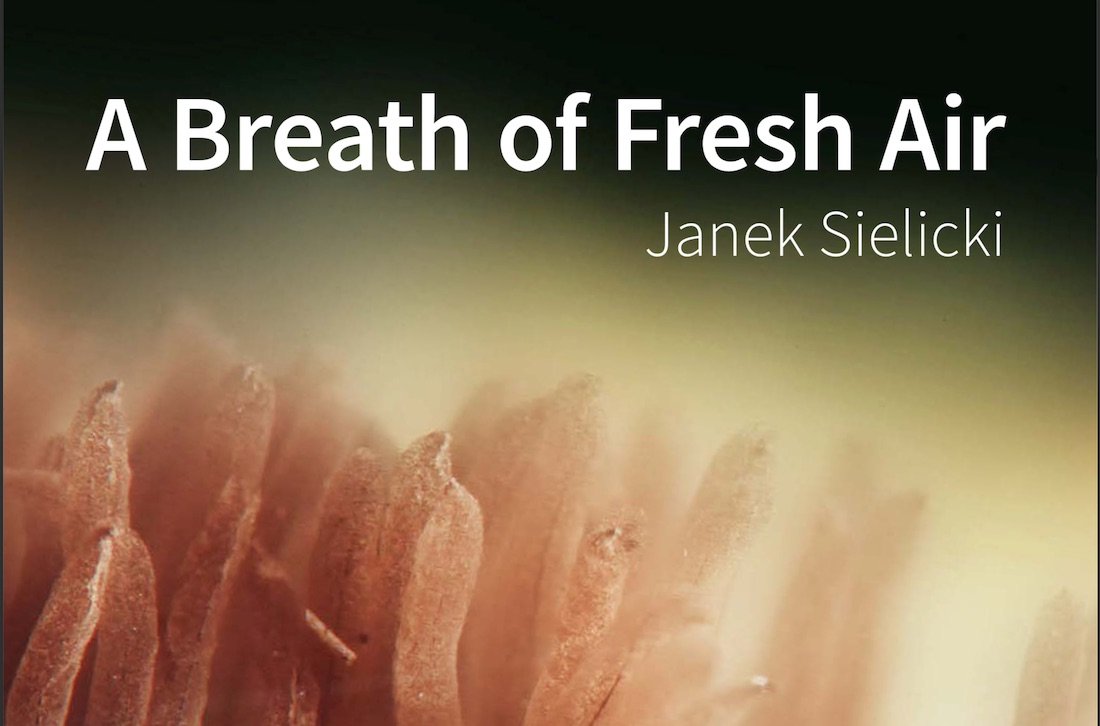A Breath of Fresh Air Review - Part I