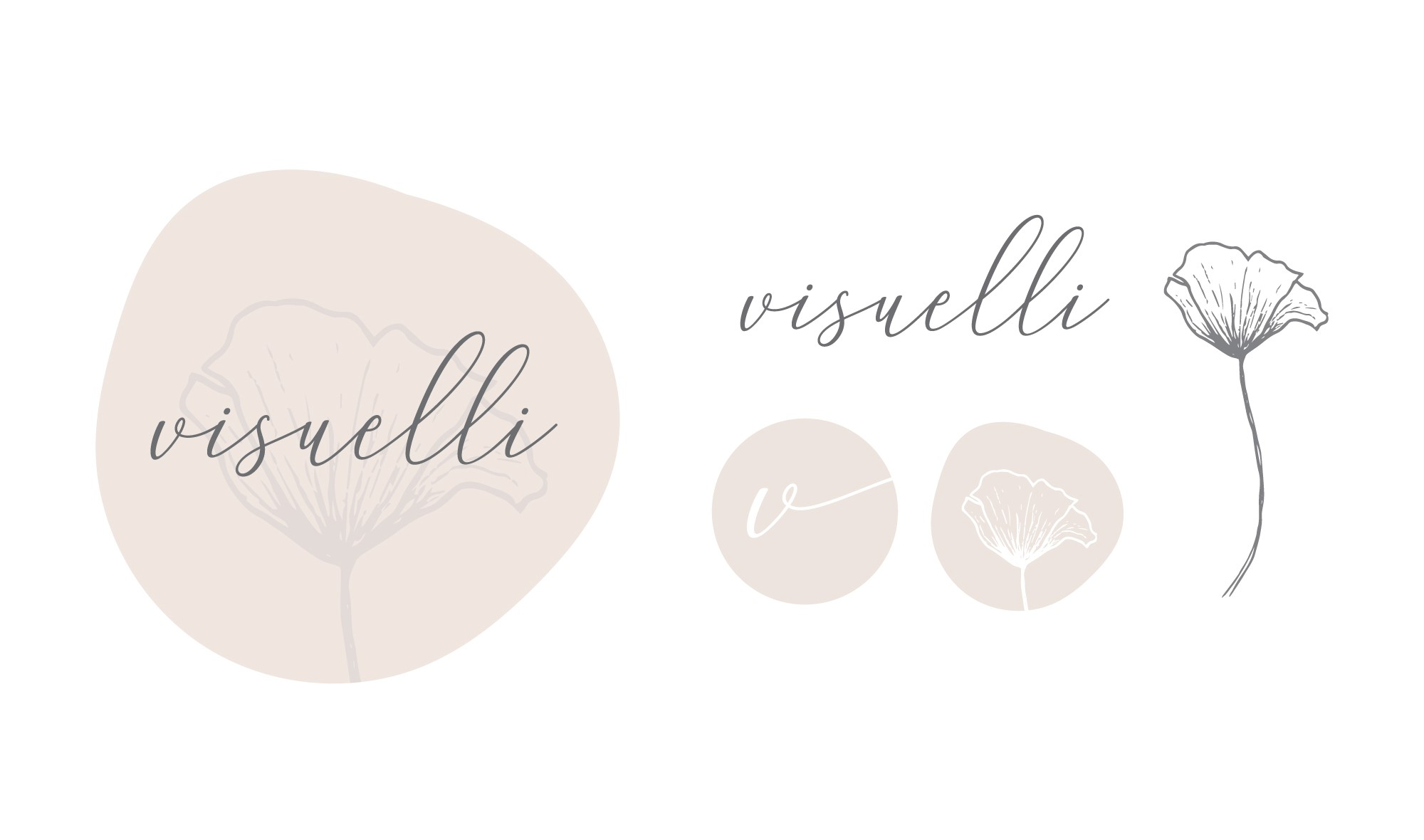 logo for Visuelli photography brand item