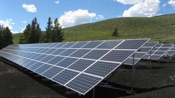 Solar farm green