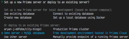 Photo of database choices given after prisma init is run