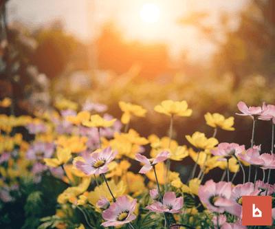 ¿Puedo hacer uso de un jardín comunitario al que tengo acceso directo?