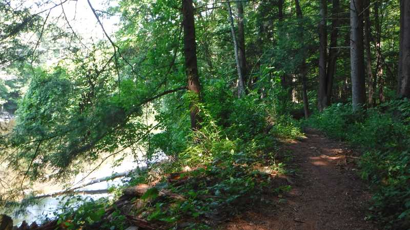 Trail along the Housatonic River