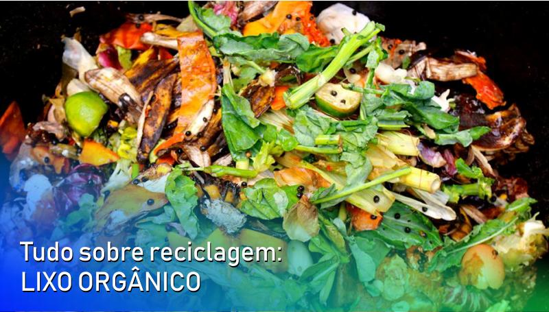 Imagem em destaque para o artigo: Tudo sobre reciclagem: lixo orgânico