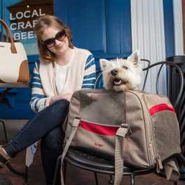 Product Spotlight: Kurgo Dog Carriers