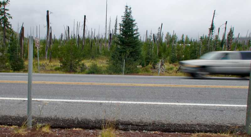 U.S. Highway 20 at Santiam Pass