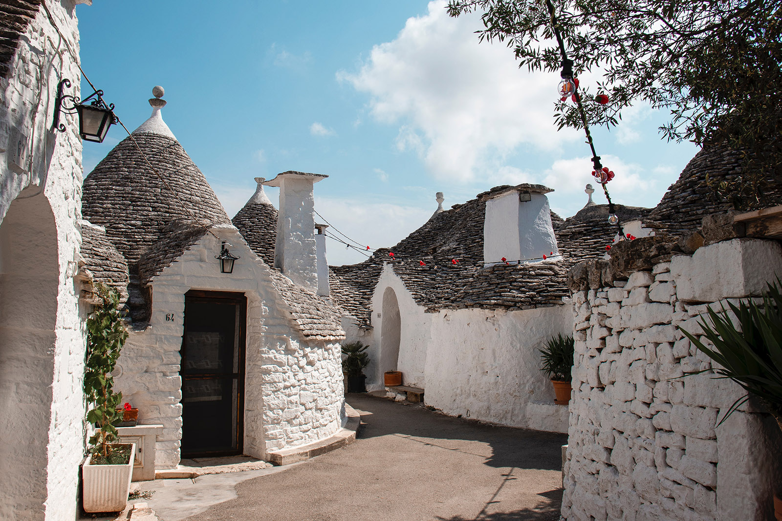 white stucco buildings in alberobello, italy
