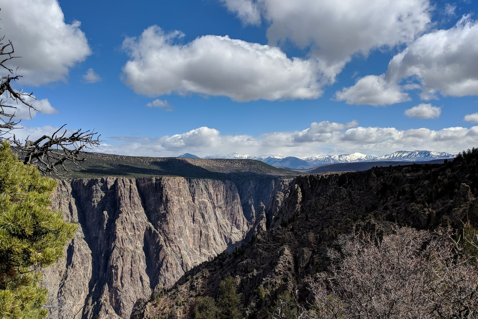 Looking northeast into the steep walls of the Black Canyon of he Gunnison. In the distance, a range of domed, snow-covered peaks.