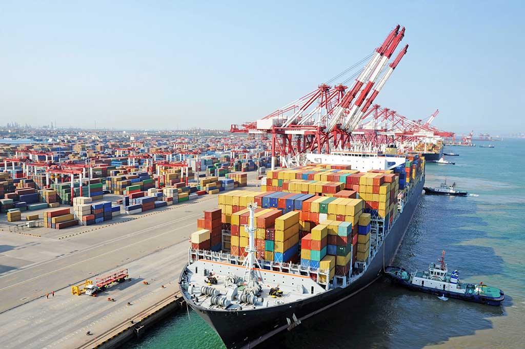 Marine Militants: Bio-Invasion through Cargo Ships