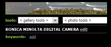Smugmug displays the standard ImageDescription for each photo