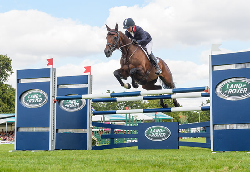 Why the next horse you buy should be an Irish Sport Horse