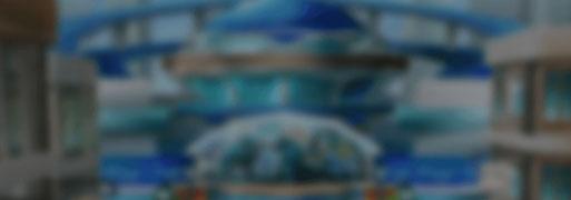 DLE: KC GRAND TOURNAMENT EDITION | YuGiOh! Duel Links Meta