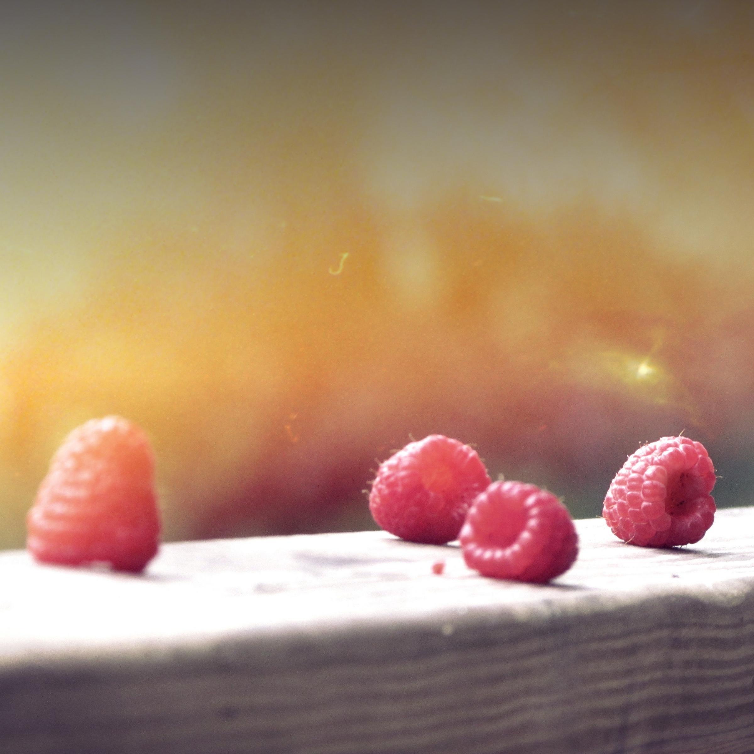 """Key art for blog post """"Raspberry Pi Network"""""""