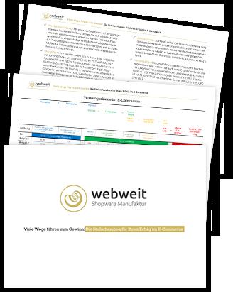 Whitepaper: Stellschrauben E-Commerce