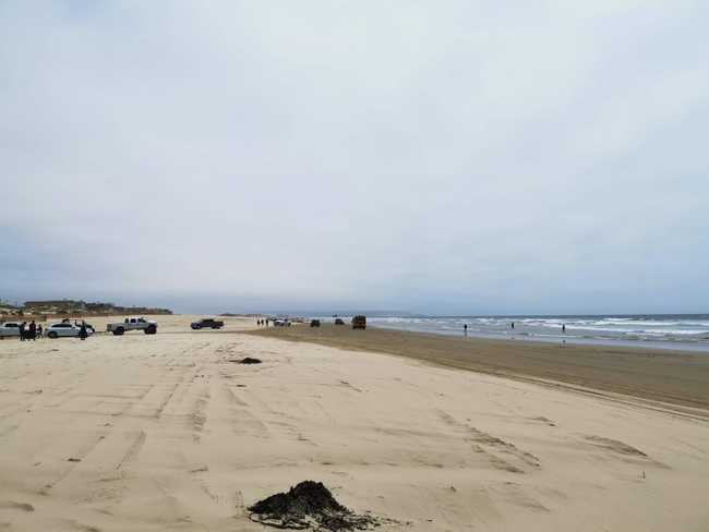 Oceano Beach