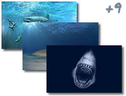 Sharks theme pack
