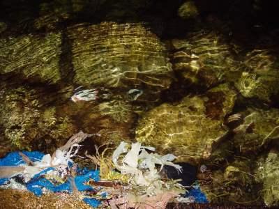 Ocean pollution, from elvis santana of FreeImages.com
