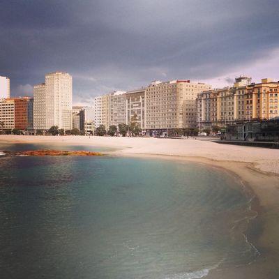 Florida Condominium Law