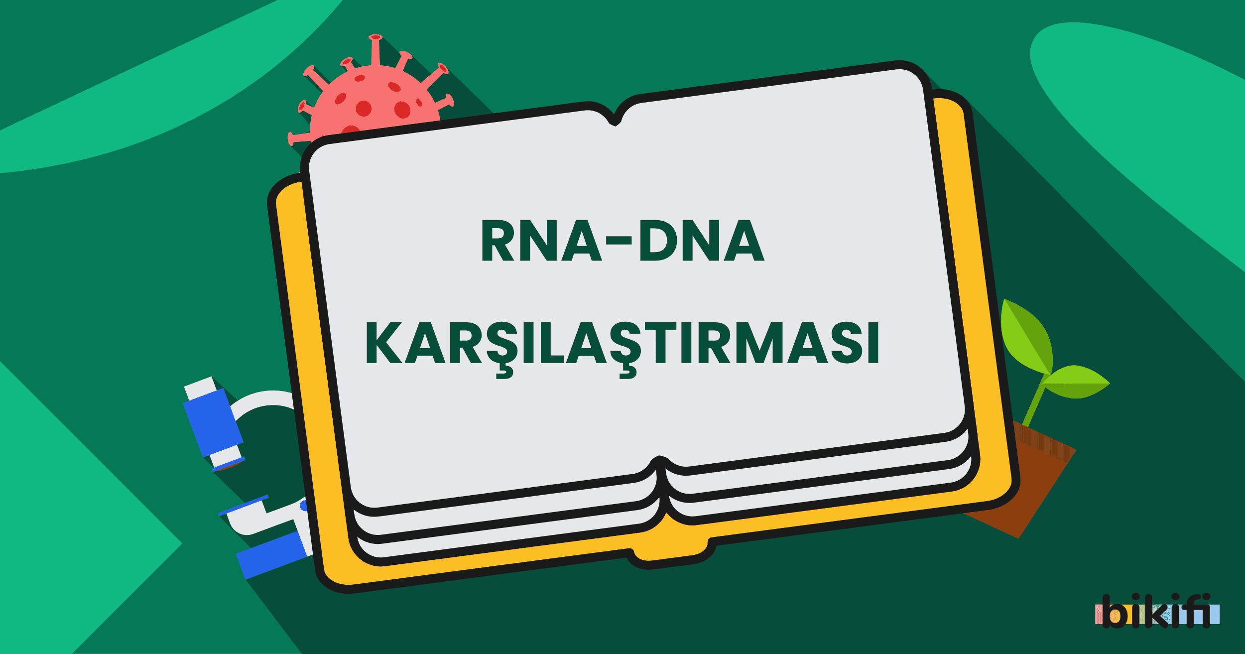 RNA – DNA Karşılaştırması