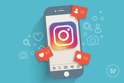 consejos algoritmo instagram