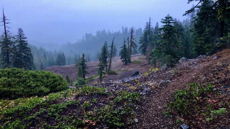A snow/rain mix falls on the trail