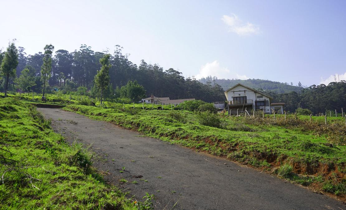 Internal main road