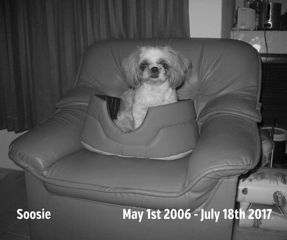 Soosie, 1. Mai 2006 - 18. Juli 2017
