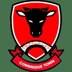Cowbridge Town AFC logo