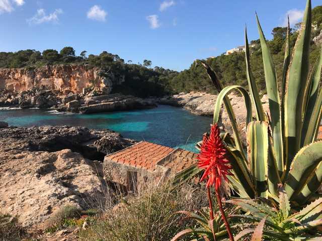 Tipps für Mallorca Urlaub im Winter
