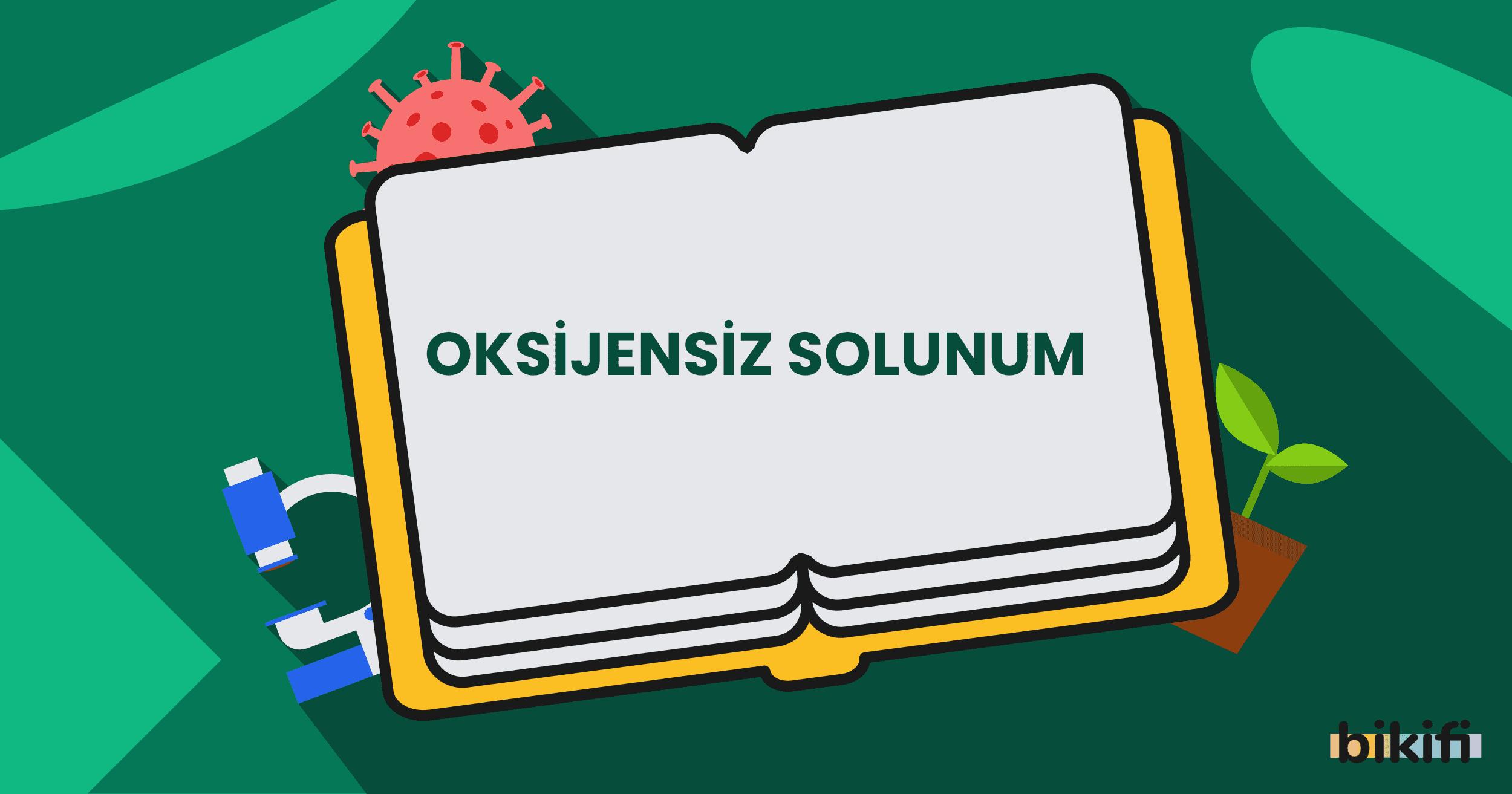 Oksijensiz Solunum