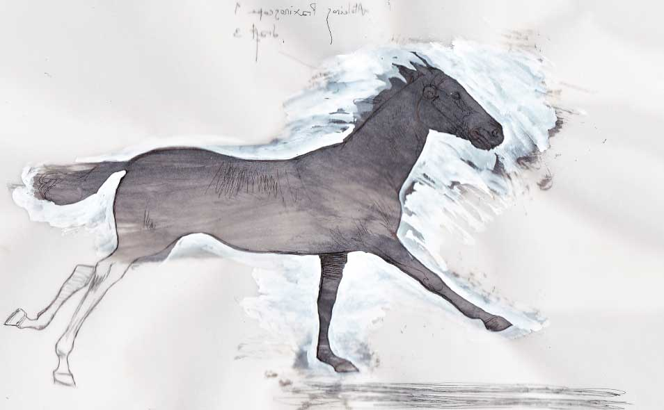 Praxinoscope illustration - Galloping horse rough - Ink drawing on paper