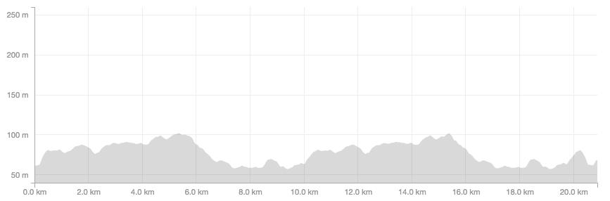 Burnham Beeches half marathon profile