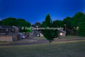 Landscape image of tree at night
